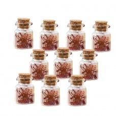 Saffron pistilli 0.1 gr (net weight) x 10 pcs